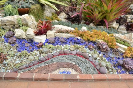 Succulent Arrangements at Sherman Gardens (1)