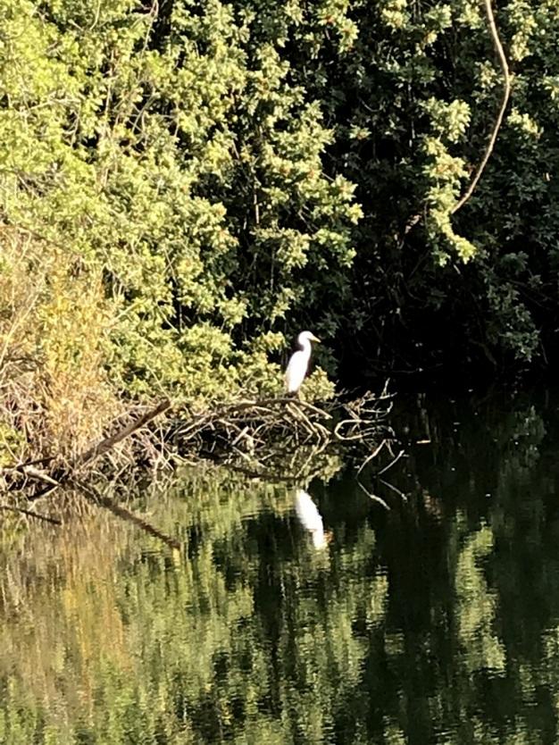 An Afternoon at El Dorado Nature Park (16)