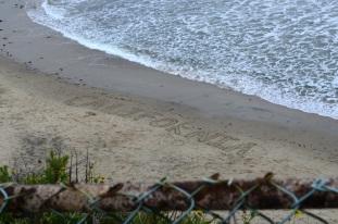 Writing on the Beach (2)