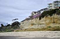 Meandering Along the Coast (3)