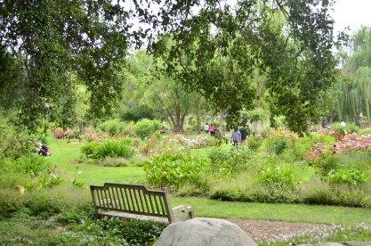 Descanso Gardens in June (1)