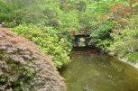 Descanso Gardens in June (10)