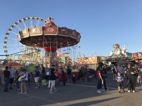 Overview of the 2019 Orange County Fair 2 (8)