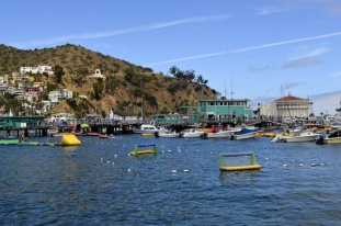 5th Annual Trip to Catalina (11)