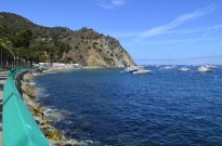 5th Annual Trip to Catalina (13)