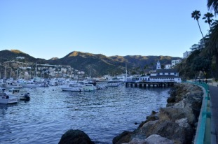 5th Annual Trip to Catalina (16)