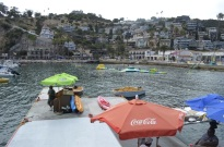 5th Annual Trip to Catalina (7)