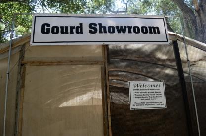 Visiting Welburn Gourd Farm (12)