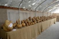 Visiting Welburn Gourd Farm (13)