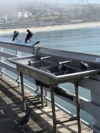 San Clemente Beach and Pier (10)
