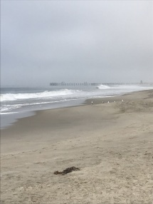 San Clemente Beach and Pier (5)