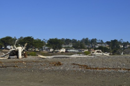 Looking up from Moonstone Beach