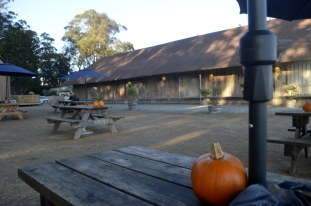 Outdoor seating at Hearst Winery