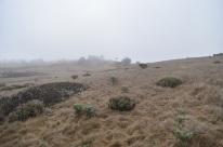 A Few Days In Cambria, 2 (2)