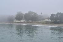 Foggy San Simeon (2)