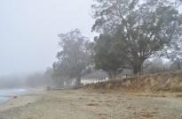 Foggy San Simeon (7)