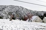 It Snowed! (12)