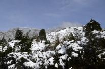 It Snowed! (5)