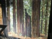 Road 2 California Quilt Show, part 2 (18)