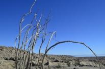 Heading To The Salton Sea (6)