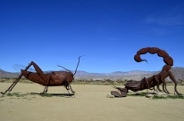 Borrego Springs Sculptures (6)