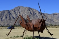 Borrego Springs Sculptures (7)