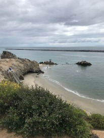 Corona Del Mar, Before Stay-at-home Order (3)