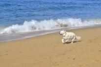 Beach Time (5)
