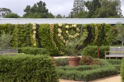 Morning at the Botanic Garden (1)