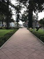 Morning Walk Through My Town (24)
