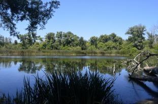 Two Mile Walk at El Dorado Nature Center (12)