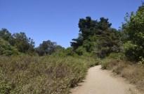 Two Mile Walk at El Dorado Nature Center (14)