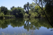 Two Mile Walk at El Dorado Nature Center (2)