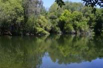 Two Mile Walk at El Dorado Nature Center (4)