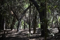 Two Mile Walk at El Dorado Nature Center (6)