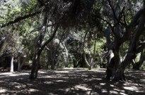 Two Mile Walk at El Dorado Nature Center (7)