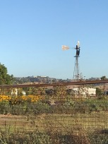 Visit to Cal Poly Farm Store (11)