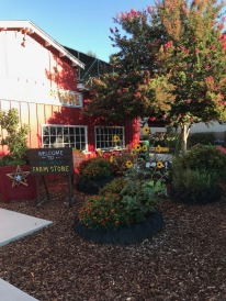 Visit to Cal Poly Farm Store (5)
