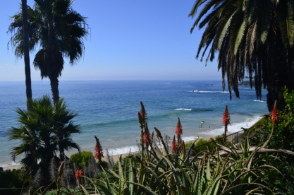 Beautiful Laguna Beach (1)