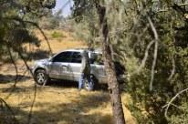 Picnic Near Mount Pinos (6)