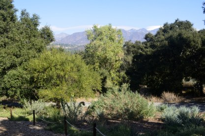 Morning at Descanso Gardens, 2 (12)