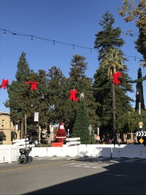 Old Town Orange, Ready for the Holidays (5)