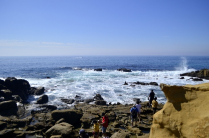 Views at Laguna Beach Tidepools (1)