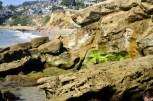 Views at Laguna Beach Tidepools (12)