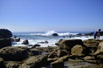 Views at Laguna Beach Tidepools (5)