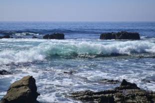 Views at Laguna Beach Tidepools (7)