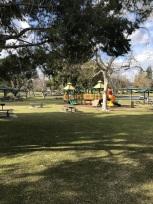 A Walk at Yorba Regional Park (3)