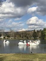 A Walk at Yorba Regional Park (5)