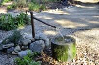 Garden Art (2)
