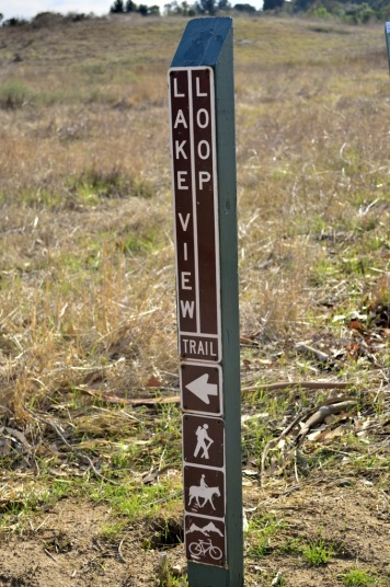 Read While You Walk (10)